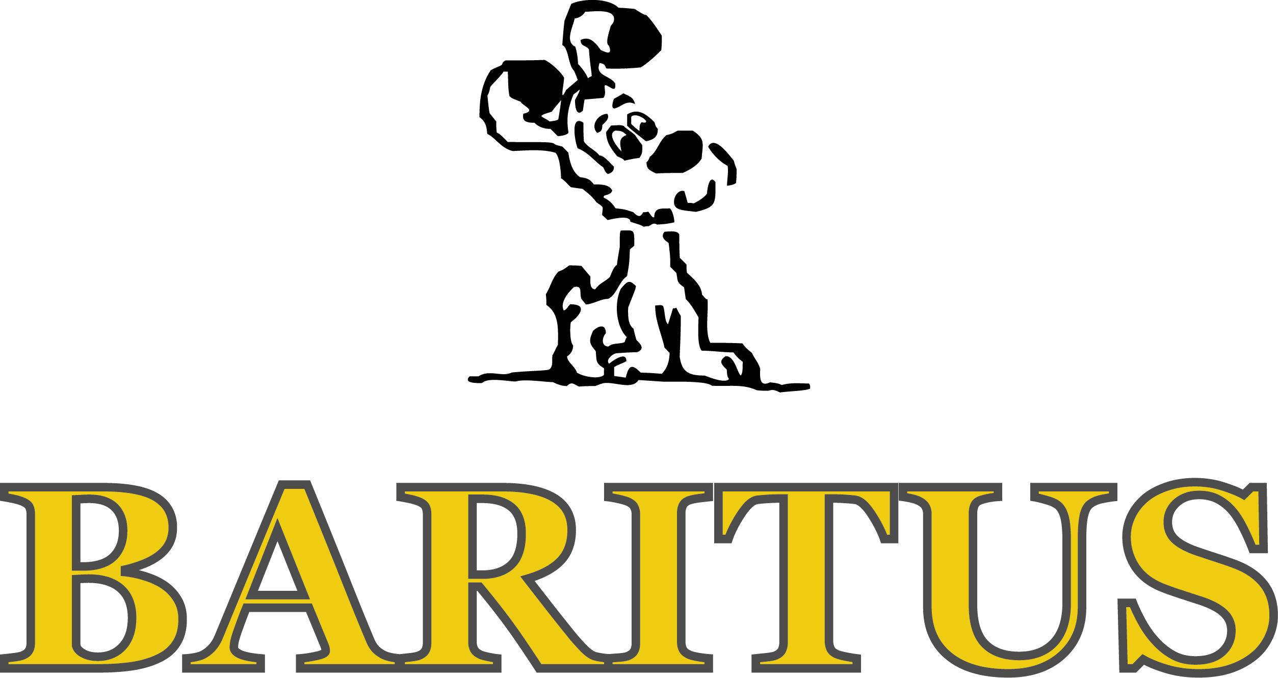 www.baritus.pl